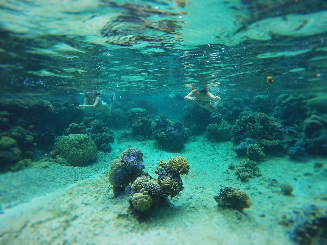 https://tahititourisme.fr/wp-content/uploads/2017/08/Bora-Bora-Reef-Discovery-2.jpg