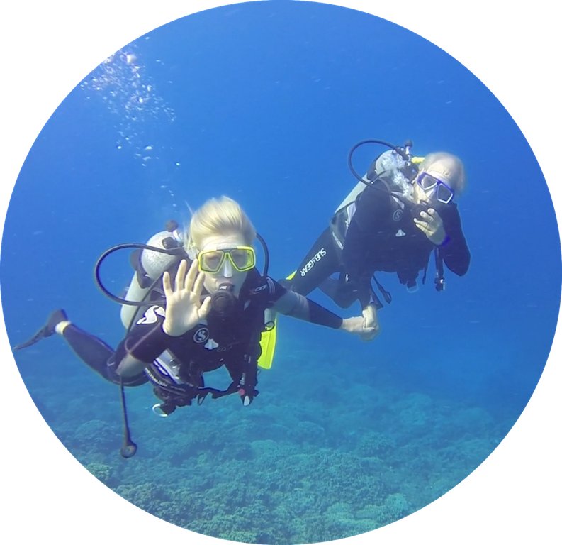 https://tahititourisme.fr/wp-content/uploads/2017/08/Divers-in-the-first-try.png