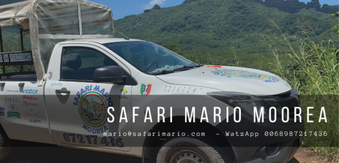 https://tahititourisme.fr/wp-content/uploads/2017/08/Safari-Mario-Moorea.png
