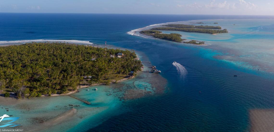 https://tahititourisme.fr/wp-content/uploads/2017/08/Tahiti-Dive-Management.png