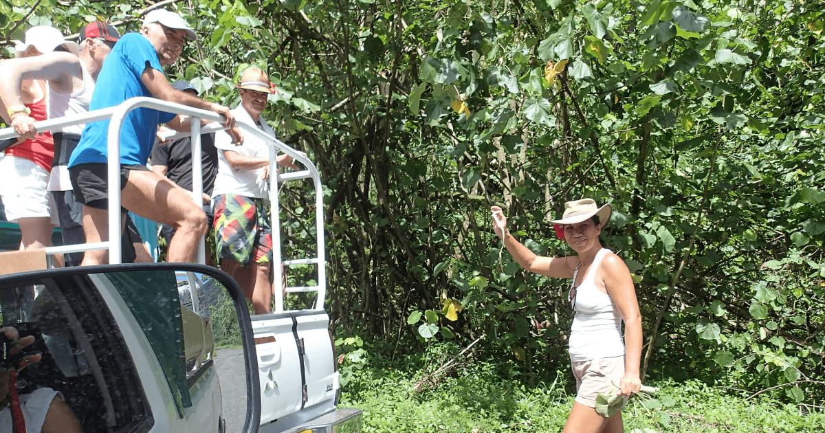 https://tahititourisme.fr/wp-content/uploads/2017/08/Tahiti-Safari-Expeditions_1140x500-min.png