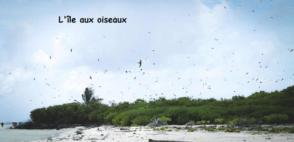 https://tahititourisme.fr/wp-content/uploads/2017/08/Tahiti-Voile-et-Lagon-photo-de-couv-2.jpg