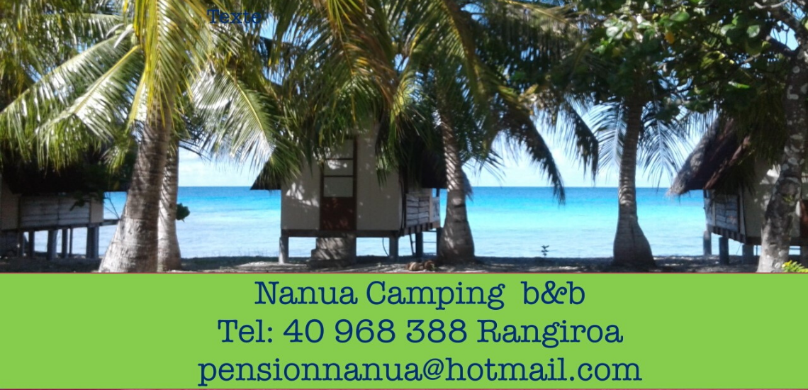 https://tahititourisme.fr/wp-content/uploads/2017/08/nanuacamping_1140x550.png