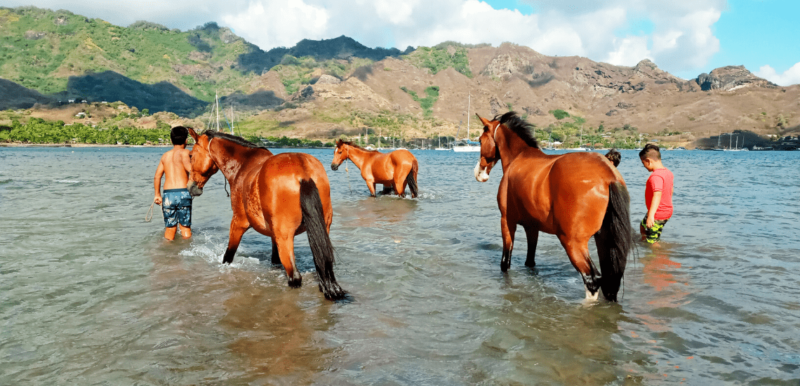 https://tahititourisme.fr/wp-content/uploads/2017/08/nukuhivaacheval_1140x550-min.png