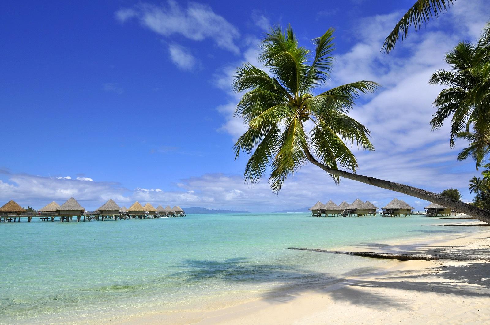 https://tahititourisme.fr/wp-content/uploads/2017/12/ic-moana-matira-beach_7461046204_o.jpg