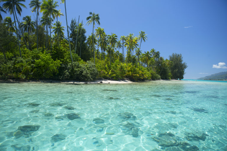 Tahiti et les Marquises