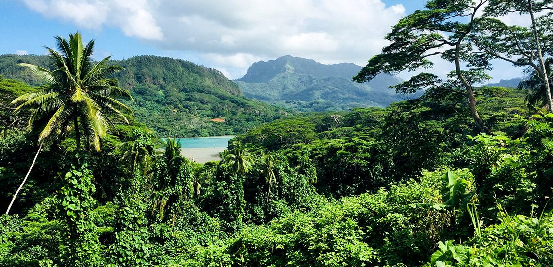 https://tahititourisme.fr/wp-content/uploads/2018/05/ACTIVITES-TERRESTRES-Green-Tours-Huahine-2.jpg