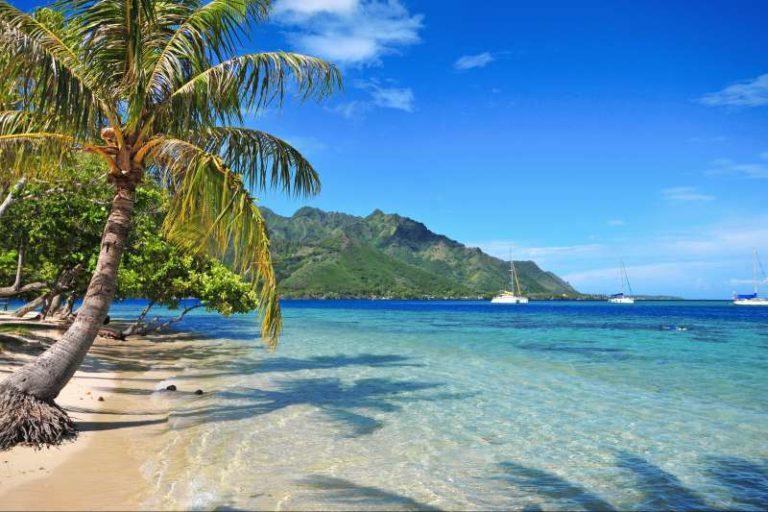 Les Marquises d'île en île avec Luc Federmeyer et Nomade Aventure