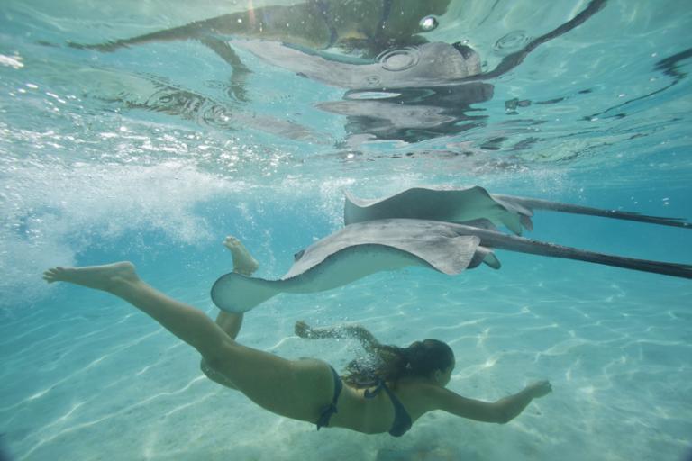 Plongée et découverte en Polynésie