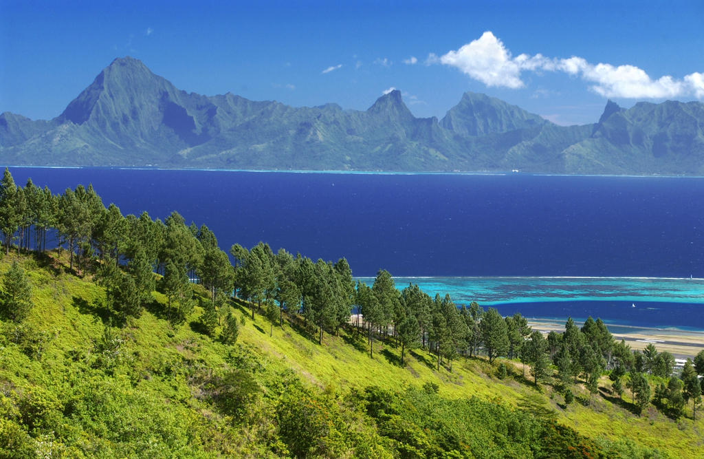 https://tahititourisme.fr/wp-content/uploads/2019/04/MontagneTahiti-57604_preview.jpg