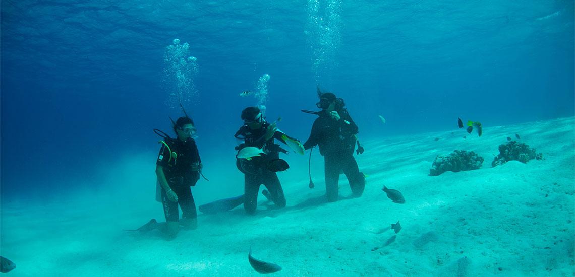https://tahititourisme.fr/wp-content/uploads/2019/04/Tahiti-Nui-Diving-1140x550.jpg