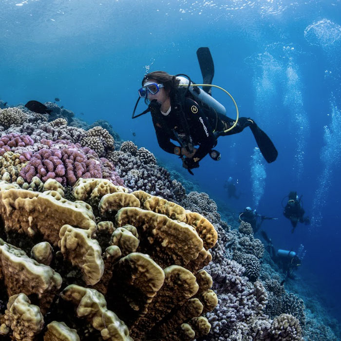 Circuit plongée 3 atolls