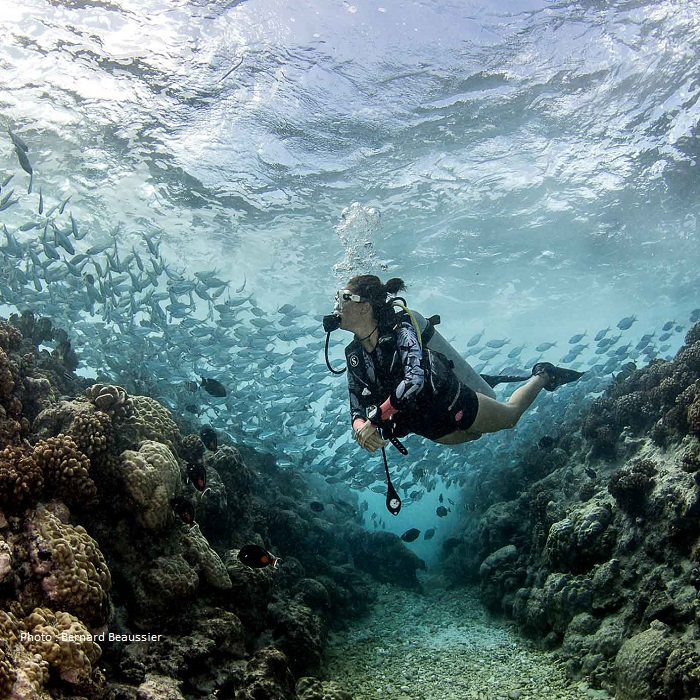 Offre Spéciale Salon de la Plongée 2020 de Paris – 6 îles – 20 plongées