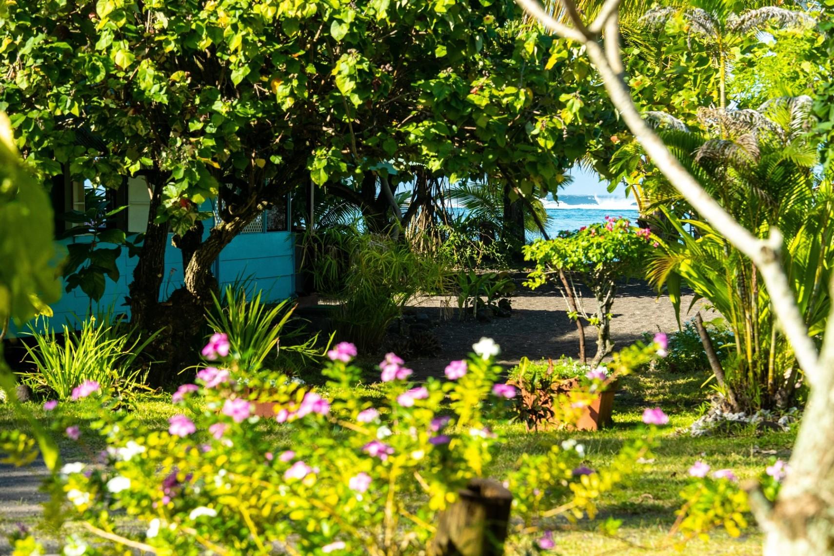 https://tahititourisme.fr/wp-content/uploads/2019/08/copie-tahiti-tourisme-800ko-1.jpg