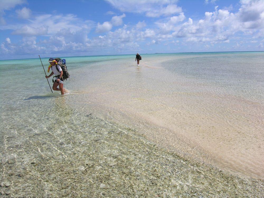 https://tahititourisme.fr/wp-content/uploads/2019/12/polynesie_tikehau_2006_2414_veuillet.jpg