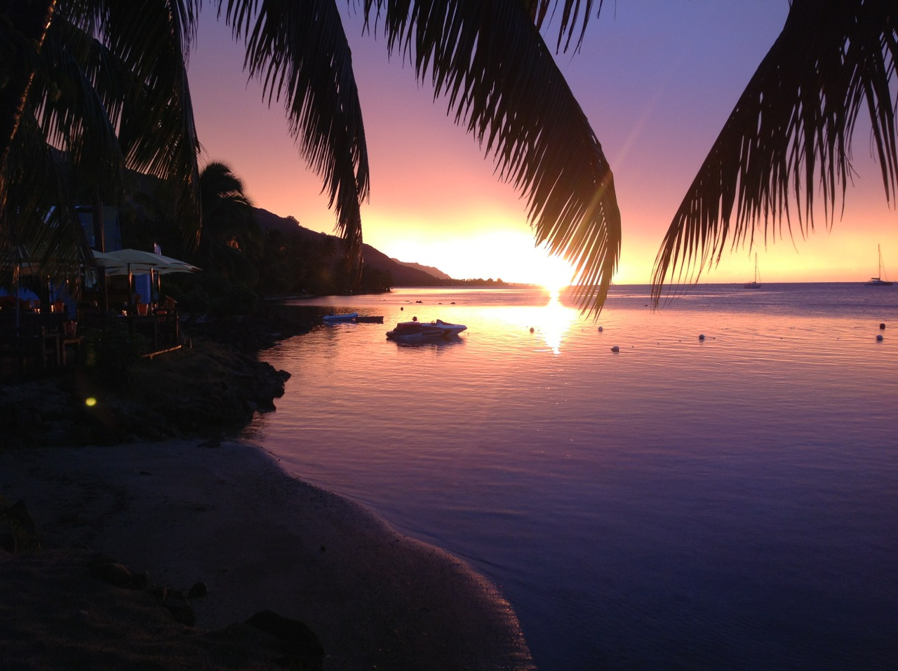 https://tahititourisme.fr/wp-content/uploads/2020/01/Moorea-Beach-Cafe.jpg