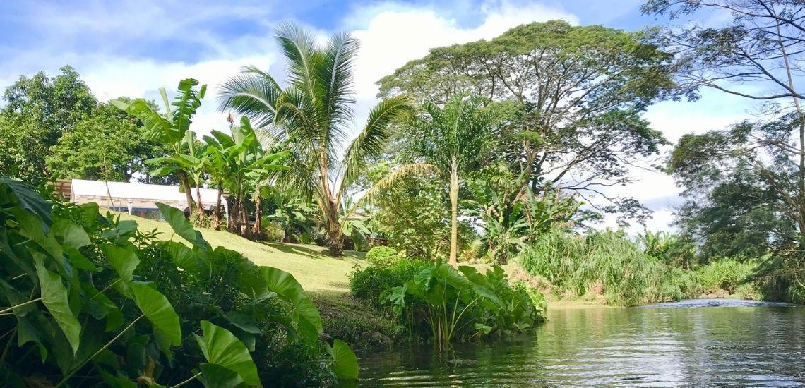 https://tahititourisme.fr/wp-content/uploads/2020/03/Teanavai_Camping_1140x5550px.jpg
