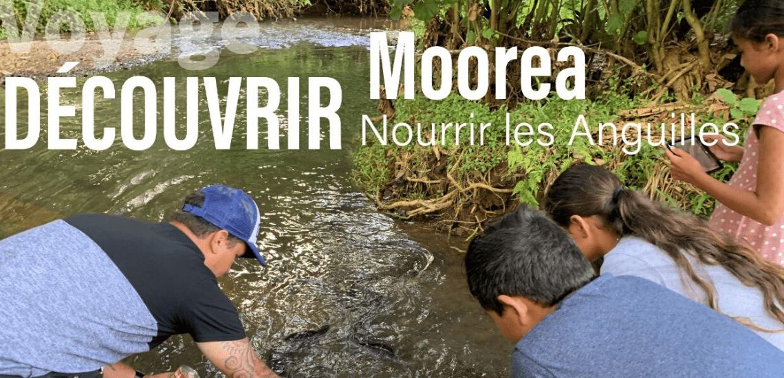 https://tahititourisme.fr/wp-content/uploads/2020/03/mooreasafaritours_1140x5502-min.png