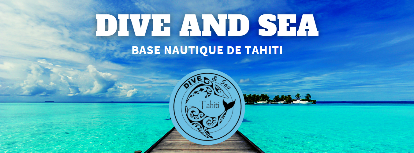 https://tahititourisme.fr/wp-content/uploads/2020/09/2020-09-05_10-26-45.png
