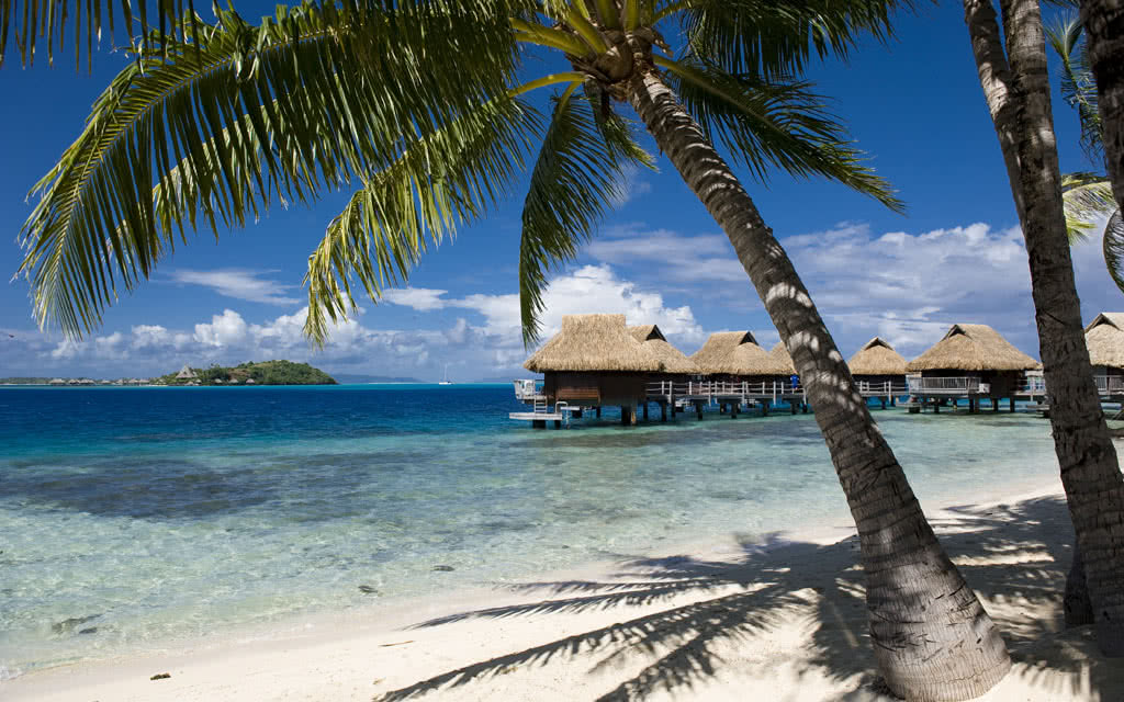 https://tahititourisme.fr/wp-content/uploads/2020/10/14-maitaipolynesiabob-bungalow-pilotis-beach2.jpg
