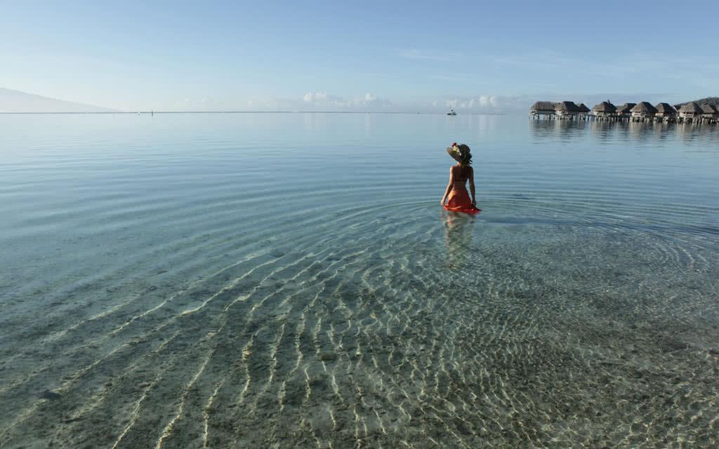 https://tahititourisme.fr/wp-content/uploads/2020/10/14-sofitelmooreaiaora-lagoon.jpg