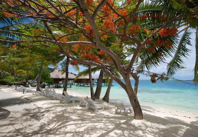 Maeva : Au cœur de l'Archipel de la Société – Combiné 4 îles
