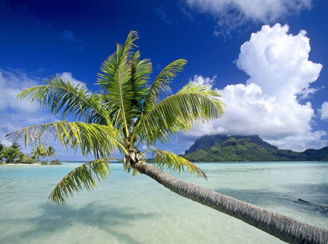 Maeva: Découverte des îles sous le vent
