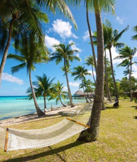 MAEVA : Le Rêve Intégral POLYNÉSIE By Mana Combiné 5 îles Société Tuamotus – Petit-déjeuner offert à TAHITI et Demi-pension offerte à MOOREA