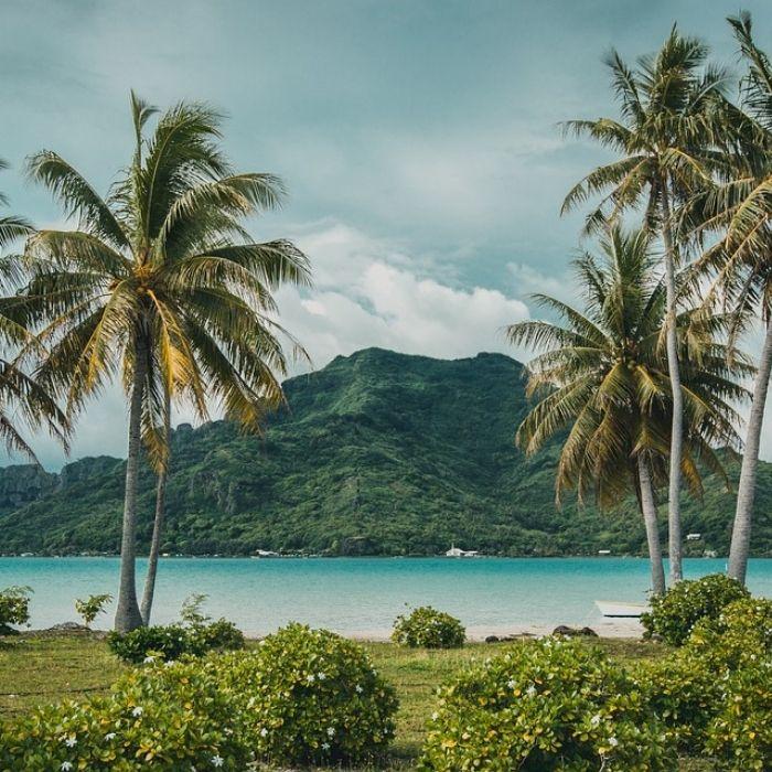 Combiné 4 îles en Pensions de famille