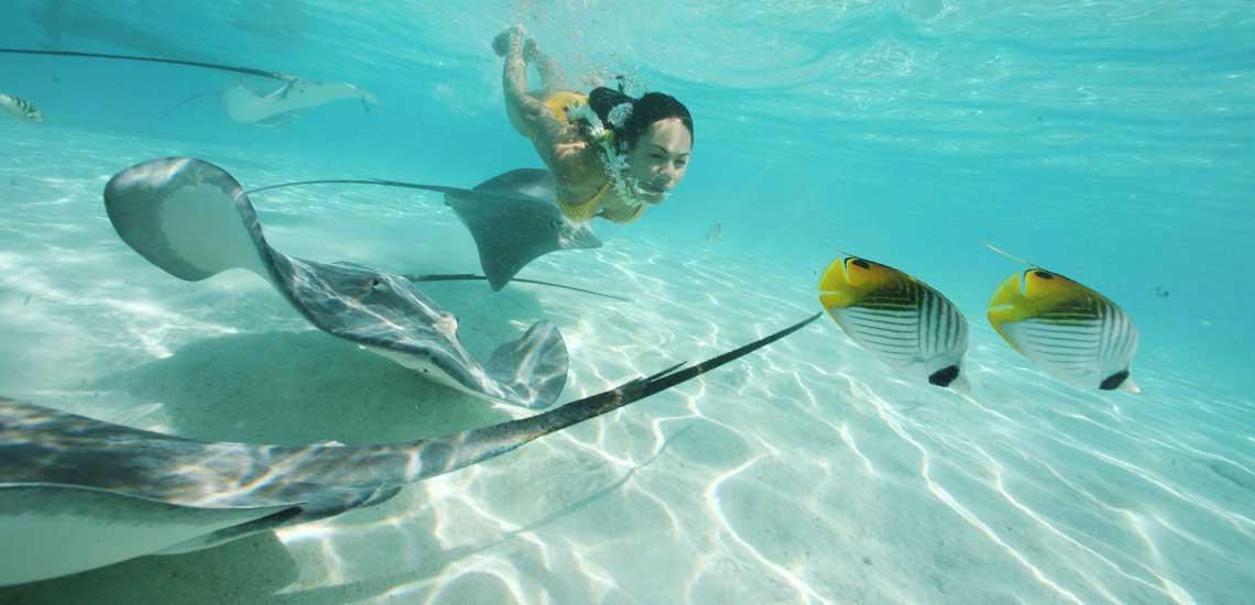 https://tahititourisme.fr/wp-content/uploads/2020/10/moorea_raies_gregoire_le_bacon_16144_tahiti_tourisme.jpg