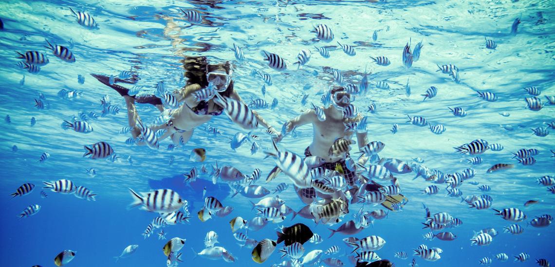 https://tahititourisme.fr/wp-content/uploads/2020/10/polynesie_francaise_bora_bora_moana_adventure_bora_combo_tour_snorkeling_7.jpg