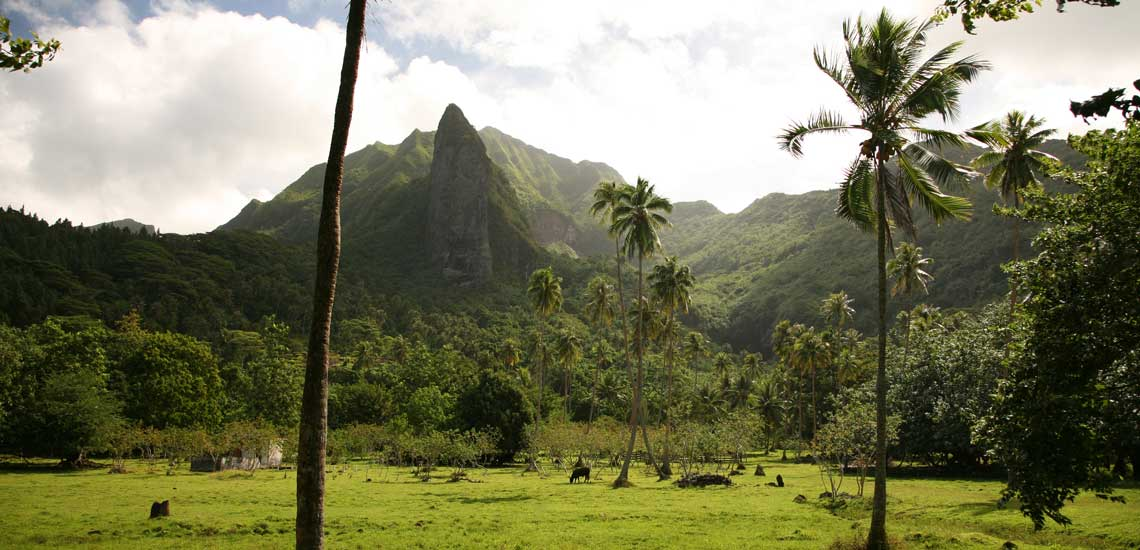 https://tahititourisme.fr/wp-content/uploads/2020/10/raiatea_42_o_42_000020970_947_20_tahiti_tourisme.jpg