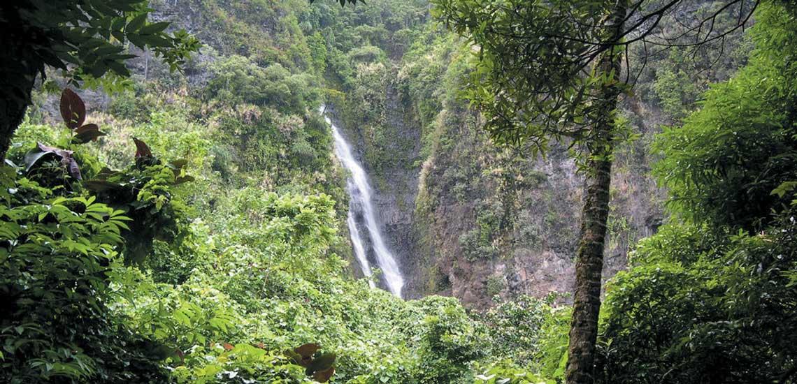https://tahititourisme.fr/wp-content/uploads/2020/10/tahiti_14611_virginie_kiou_tahiti_tourisme.jpg
