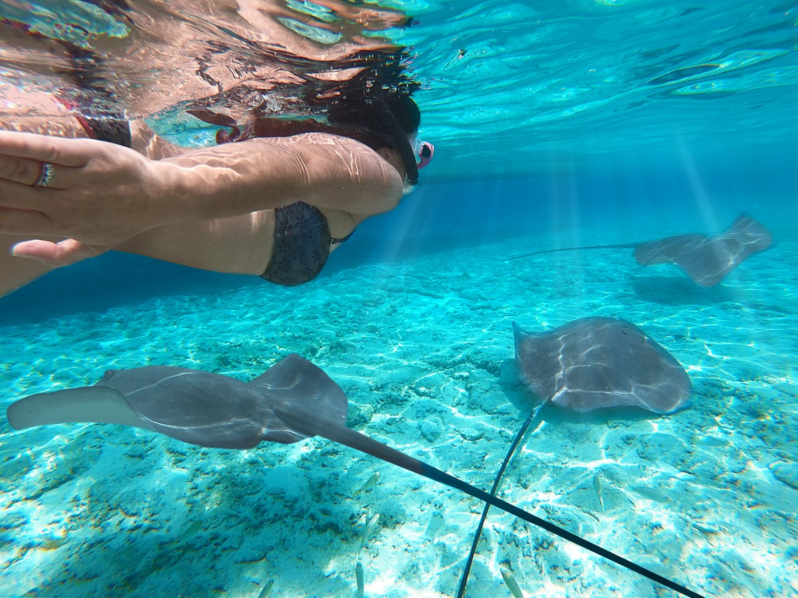 https://tahititourisme.fr/wp-content/uploads/2020/11/Lagoon-Srvice-Bora-Bora-2.jpg
