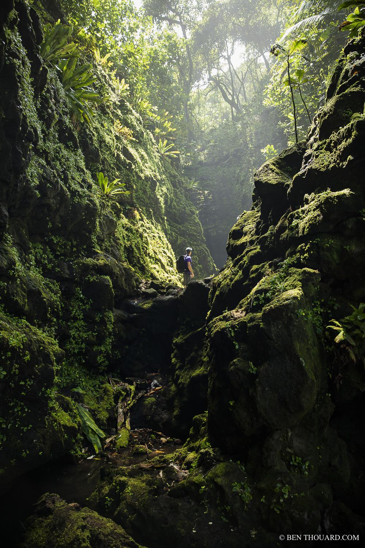 https://tahititourisme.fr/wp-content/uploads/2021/04/benthouard_tepari_hike_0242.jpg
