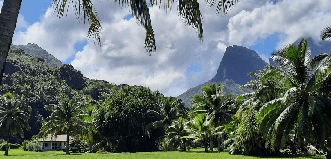 https://tahititourisme.fr/wp-content/uploads/2021/05/residenceapaura_1140x550-1-min.png