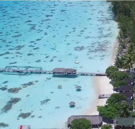 Plongez au coeur de la Polynésie