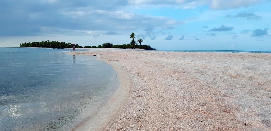 https://tahititourisme.fr/wp-content/uploads/2021/07/Spots-dEvasion-Polynesie-Tuamotu-Tikehau-sable-rose.jpg