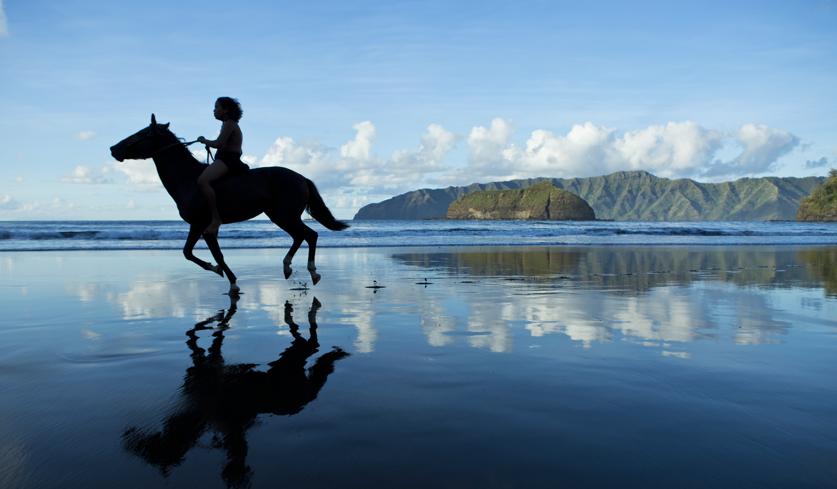 https://tahititourisme.fr/wp-content/uploads/2021/10/4-cheval-P2_06_HIVA-OA_00113.png